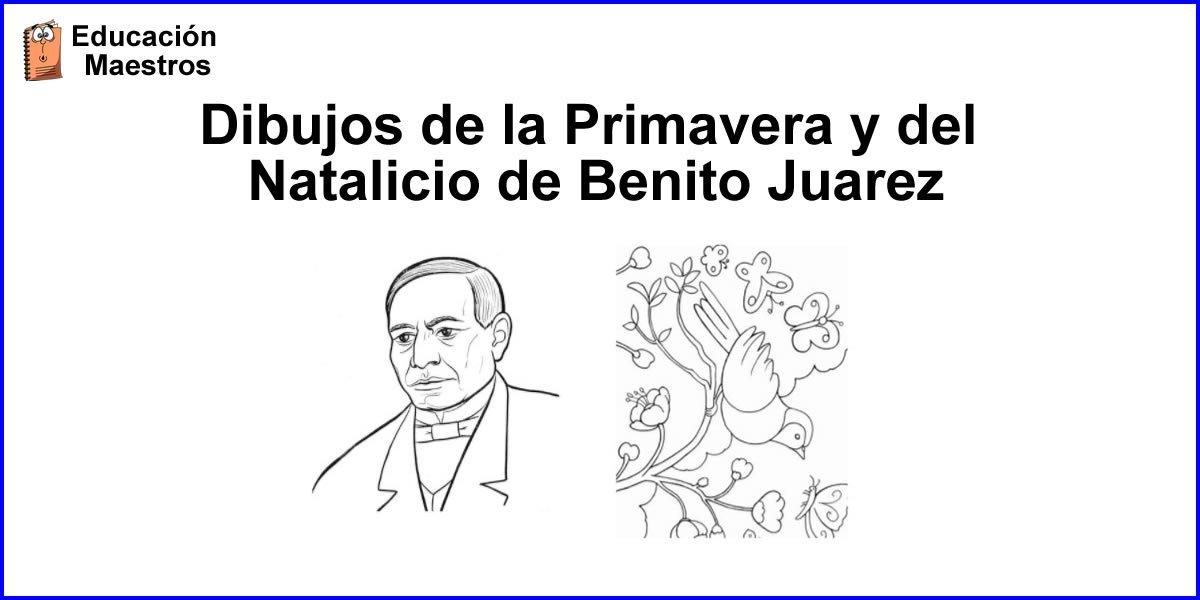 Primavera Y Natalicio De Benito Juárez Dibujos Para Colorear