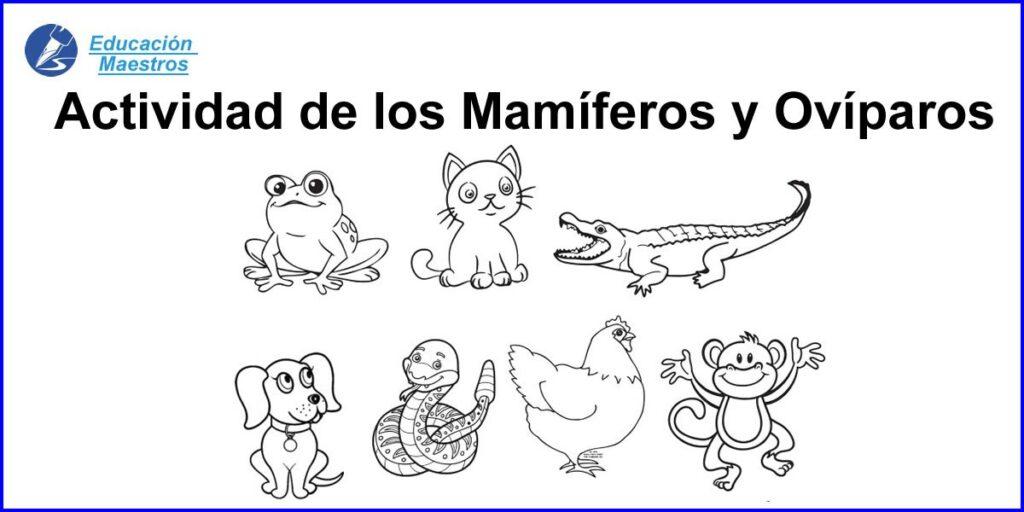 Actividades De Animales Mamiferos Y Oviparos Recortar Y Pegar